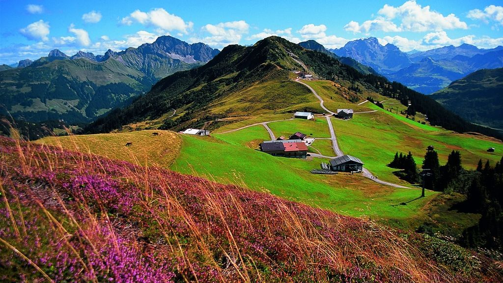 Vorarlberg single