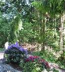Naturlehrpfad Marienberg