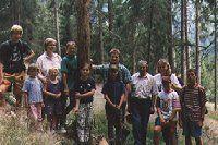 Waldlehrpfade in Kleinsölk und Mössna