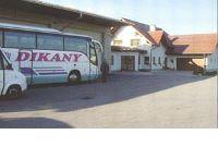 Dikany Helmut, Autobusunternehmen