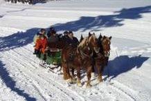 Winterwandern&Pferdeschlittenfahrten Hochhäderich