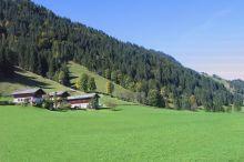 Urlaub am Oberauhof im Salzburger Land