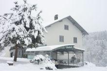 Haus Steinfeld Appartement und Gästezimmer