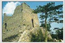 Burg Ruine Mödling