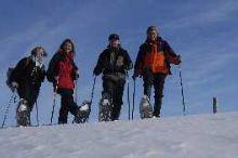 Túry na sněžnicích