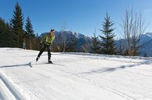 Cross Country Skiing Predigstuhl