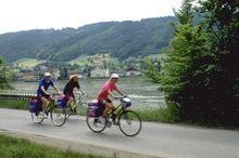 Donauradweg Wesenufer