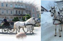 Traunsee Fiaker - Hochzeitskutsche-Pferdeschlitten