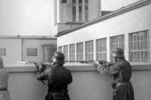 Linz Zeitgeschichte - Diesterwegschule