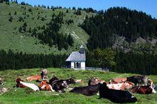 Panoramahütte Postalm
