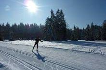 Cross country ski run  - Thalgau