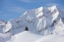Halbtages-Schneeschuhtour