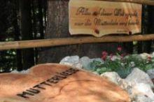 Alpbach Heritage Trail