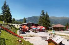 Bergrestaurant Waldtratte GmbH