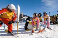 Ski- & Sportschule Krainer