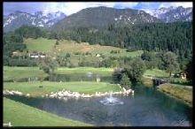 DachsteinTauern Golf & Country Club