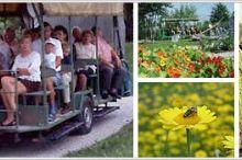 Agrarium Botanical Gardens & Adventure Park
