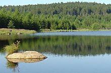 Schlesinger Teich Pond