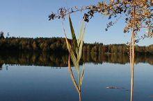 Lake Höllerersee