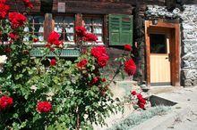 Vieux Chalet B - Bürchen