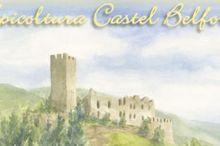 Apicoltura Castel Belfort ...un dolce segreto