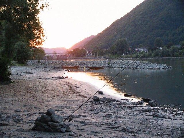 """Genießen Sie entspanntes Angelvergnügen an der Donau im Engelhartszeller Fischwasser oder im Gebiet """"Donau-Rohrbach"""". - Engelhartszell Oberoesterreich"""